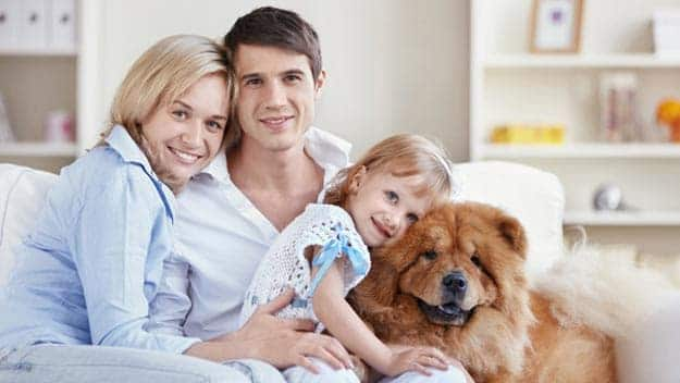 Wills & Trusts dog-young-family Direct Wills Enfield Island Village